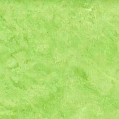 臺灣普隆塑膠地板2176