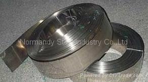 Stainless steel hard spring 1