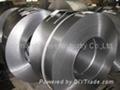 Stainless steel hard spring 2