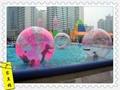 供应水上步行球 彩色步行球 步行球 1