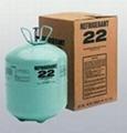 refrigerant  gas R22