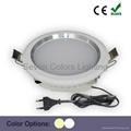 10W Elegant LED Ceiling Light LED