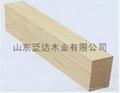Export Japan Market F4 Star Poplar LVL  1
