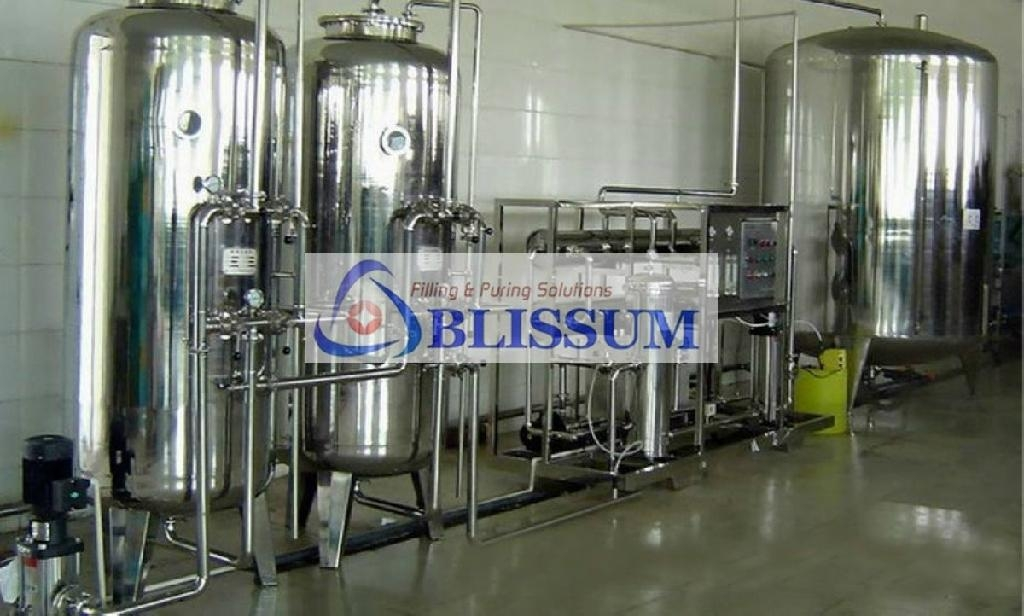 Pure Water Treatment Plant Ro Blissum China