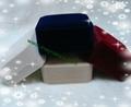 手链手环植绒手镯包装塑胶盒 2