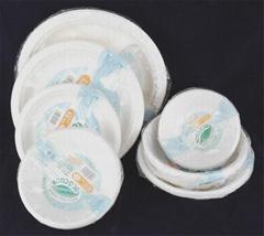 Paper Pulp Tableware