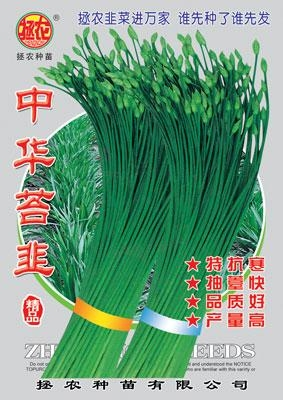 中华苔韭 1