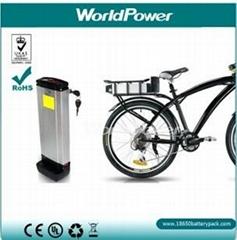水壶式电动自行车锂电池