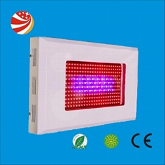 2012 promotional high power 300w led  grow light