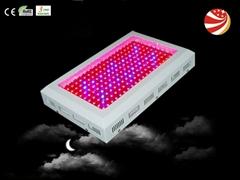 2012  200w led 植物灯