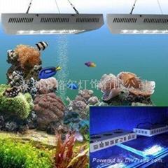 led鱼缸照明观赏灯