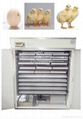 CE certified micro-computer incubator for chicken egg YZITE-17 1