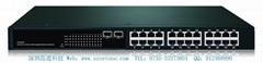 T24F2 Pure Gigabit Ethernet Switch