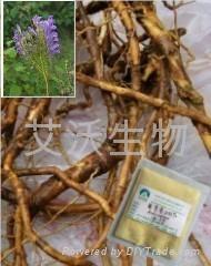 黃芩苷 黃芩甙