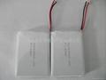 锂离子聚合物电池;锂聚合物电池;锂离子电池;锂电池;电池;Li-ion battery 3