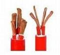 專業生產供應硅橡膠特種控制電纜