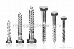 Hex lag screws