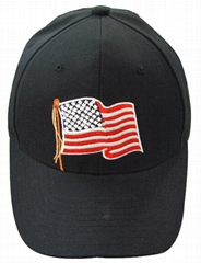 Flag cap for voting