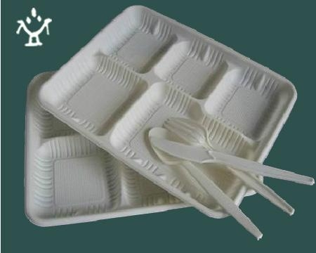 Corn starch Disposable lunch box 4