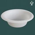 Biodegradable disposable dinnerware