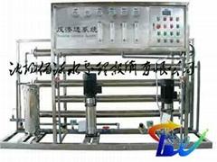 雙級反滲透純淨水加工設備