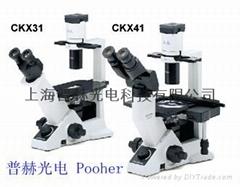 临床倒置显微镜CKX41 奥林巴斯CKX41
