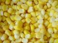 frozen sweet corn kernels iqf sweet corn