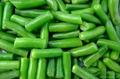 frozen GREEN BEAN CUTS IQF GREEN BEAN