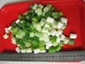 FROZEN green scallion pieces(qianye)