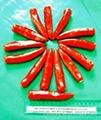 IQF chilli frozen chilli rings