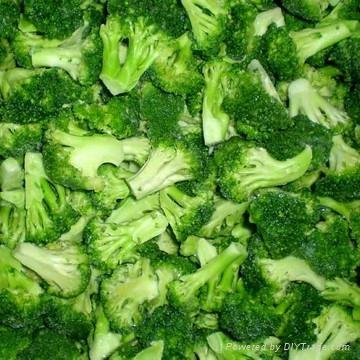 frozen broccoli florets iqf broccoli florets(qianye) 1