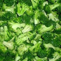 frozen broccoli florets iqf broccoli florets(qianye)