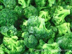 frozen broccoli florets iqf broccoli florets(qianye) 2