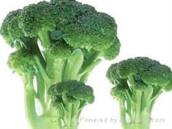 frozen broccoli florets iqf broccoli florets(qianye) 3