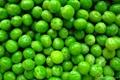 frozen green peas iqf green peas