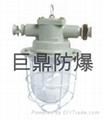 DGS60/127B矿用隔爆型白炽灯 3