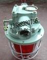 DGS60/127B矿用白炽灯