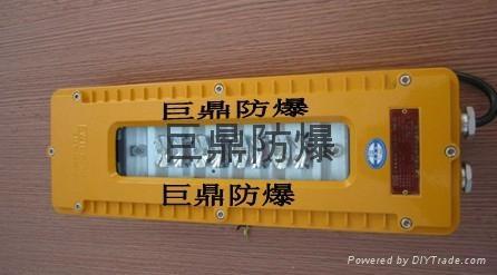 DGS10/127L(A)矿用隔爆型LED巷道灯 1