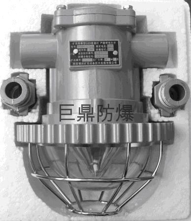 DGS20/127L(A)矿用隔爆型LED巷道灯价格 1