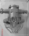 DGS20/127L(A)矿用隔爆型LED巷道灯价格 2