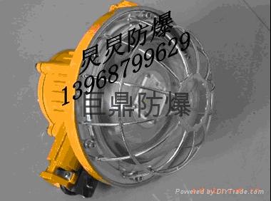 DGS30/127L(A)矿用隔爆型LED巷道灯 2