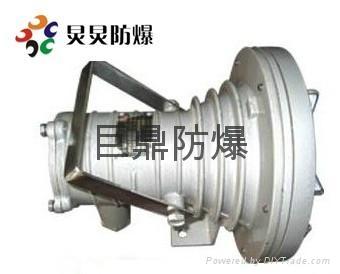 DGS(DGY)20/127L(B)矿用隔爆型LED投光灯 1
