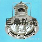 DGS(DGY)20/127L(B)矿用隔爆型LED投光灯 2