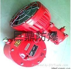DGS(DGY)20/127L(B)矿用隔爆型LED投光灯 3