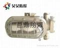 DGC35/127N(B)矿用隔爆型支架灯 1