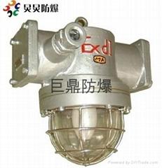 DGS70/127N(A)矿用隔爆型防爆钠灯