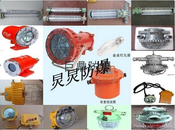 DGS70/127N(A)矿用隔爆型防爆钠灯 2
