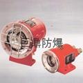 DGY35/24B(A B)矿用隔爆型照明灯 3