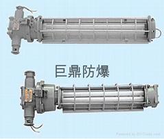 DGS18 24/127Y矿用隔爆型节能荧光灯