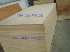 供應健康環保優質木門專用膠合板